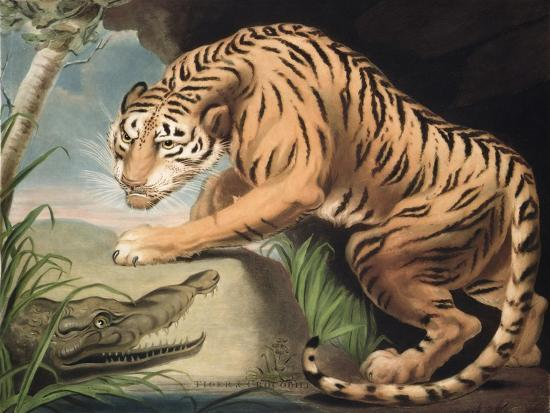 james-northcote-tiger-and-crocodile-engraved-by-charles-turner-1773-1857-pub-by-james-daniell-and-co-1799