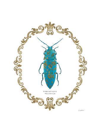james-wiens-adorning-coleoptera-viii