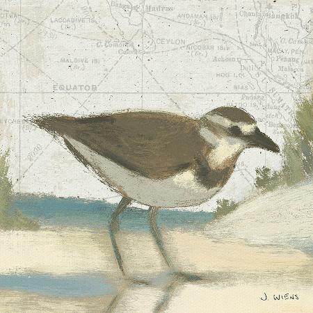 james-wiens-beach-bird-iii