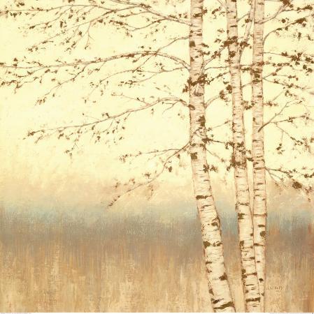james-wiens-birch-silhouette-ii