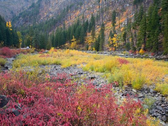 jamie-judy-wild-autumn-color-along-the-wenatchee-river-tumwater-canyon-wenatchee-national-forest-washington-usa