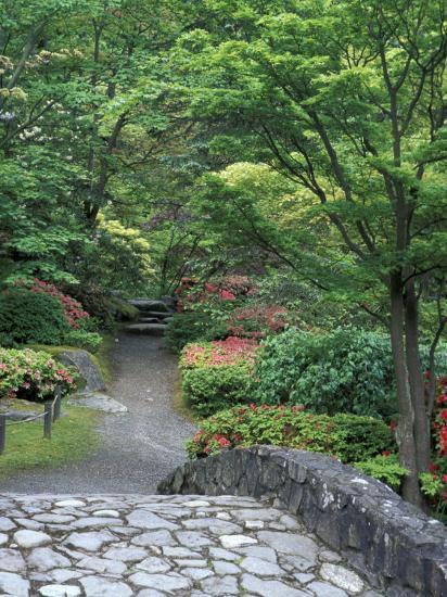 japanese garden stone bridge in washington park arboretum seattle washington usa - Japanese Garden Stone Bridge