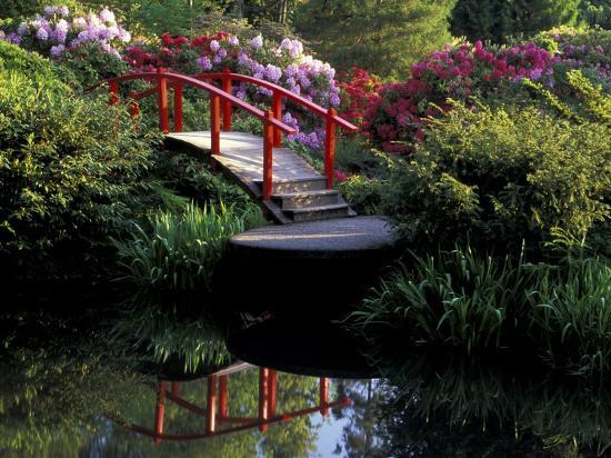 jamie-judy-wild-moon-bridge-and-pond-in-a-japanese-garden-seattle-washington-usa