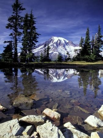 jamie-judy-wild-mt-rainier-reflected-in-tarn-mt-rainier-national-park-washington-usa