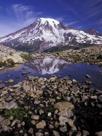 jamie-judy-wild-reflection-in-stream-of-grinnel-glacier-mt-rainier-national-park-washington-usa
