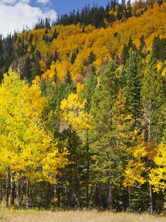 jamie-judy-wild-view-from-highway-34-rocky-mountain-national-park-colorado-usa