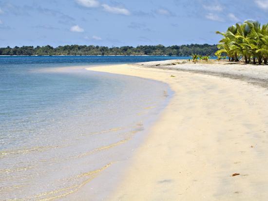 jane-sweeney-boca-del-drago-beach-colon-island-isla-colon-bocas-del-toro-province-panama-central-america