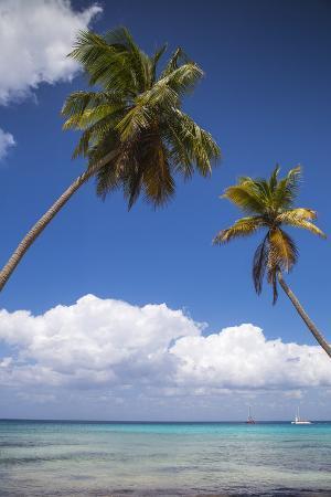 jane-sweeney-dominican-republic-punta-cana-parque-nacional-del-este-saona-island-catuano-beach