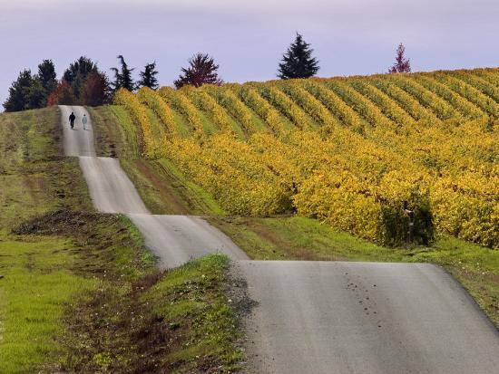 janis-miglavs-couple-walking-in-vineyard-king-estate-winery-eugene-oregon