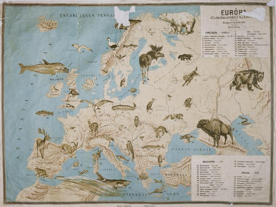 janos-balint-map-of-animals-in-europe