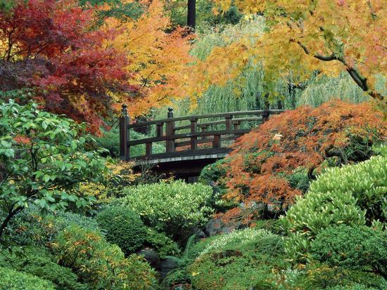 japanese-gardens-portland-oregon-usa