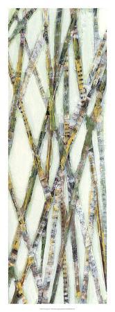 jarman-fagalde-lemongrass-iv