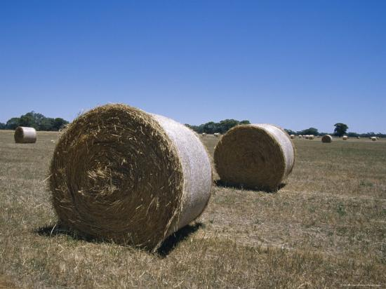 jason-edwards-round-hay-bales-in-a-farm-field-against-a-vast-blue-sky-australia