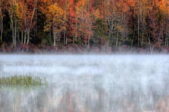 jay-o-brien-usa-pennsylvania-benton-fog-over-pond