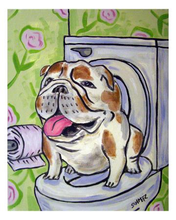 jay-schmetz-bulldog-going-to-the-bathroom