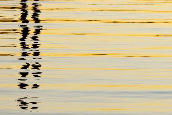 jaynes-gallery-abstract-reflections-in-san-diego-harbort-san-diego-california-usa