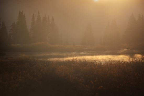 jaynes-gallery-colorado-little-molas-lake-mist-rises-off-wetlands-at-sunrise
