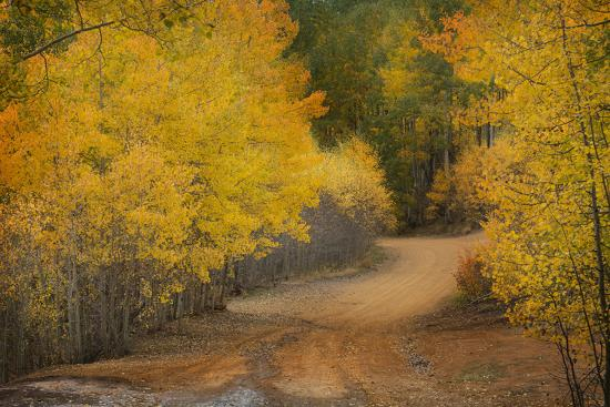 jaynes-gallery-colorado-san-juan-mountains-autumn-colors-surround-ophir-pass-road