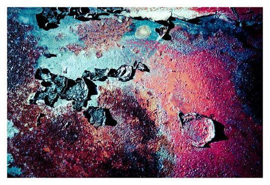 jean-francois-dupuis-purple-rust-up-close-iii