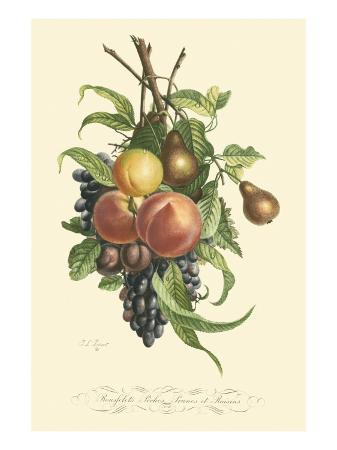 jean-louis-prevost-plentiful-fruits-i
