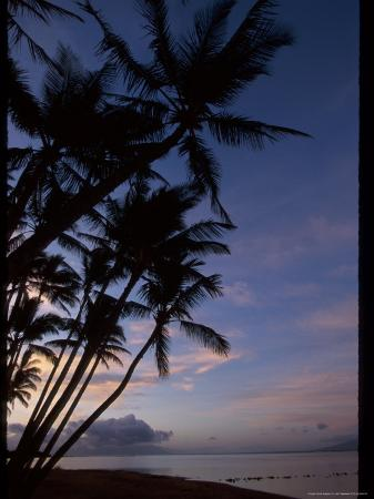 jeff-greenberg-molokai-one-alii-park-kalohi-channel-beyond-palm