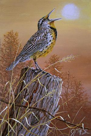 jeff-tift-meadowlark-painting