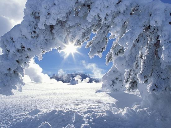 jeff-vanuga-snowy-landscape-in-yellowstone
