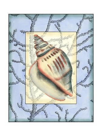 jennifer-goldberger-custom-shell-inset-composition-iii