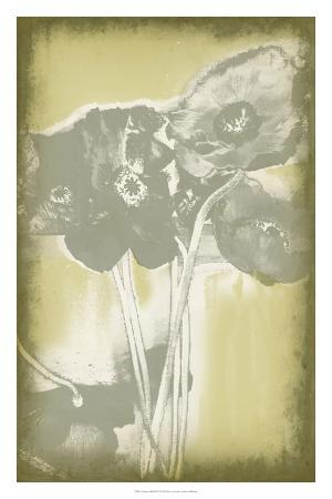 jennifer-goldberger-poppies-in-relief-ii