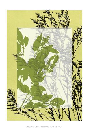 jennifer-goldberger-translucent-wildflowers-iii