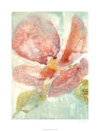 jennifer-goldberger-veiled-poppy-ii