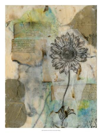 jennifer-goldberger-vellum-floral-i