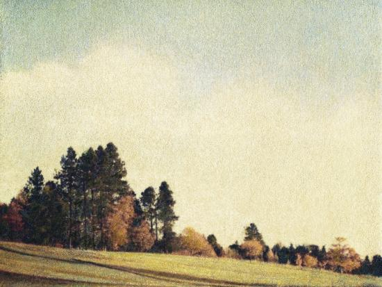 jennifer-kennard-autumn-morning