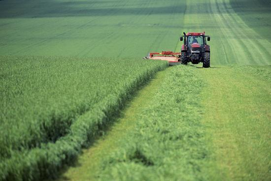 jeremy-walker-tractor-cutting-grass-for-silage