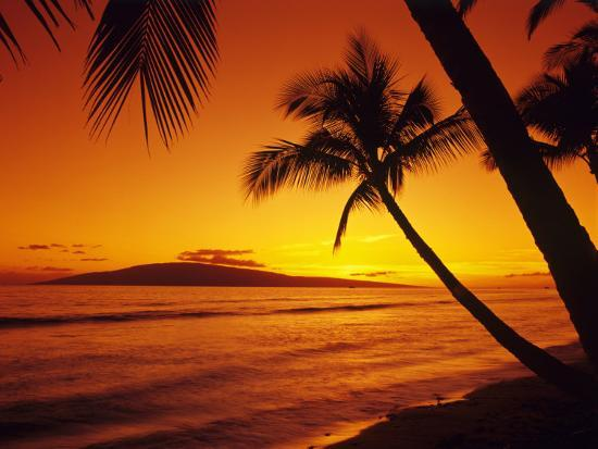 jerry-ginsberg-colorful-sunset-in-a-tropical-paradise-maui-hawaii-usa
