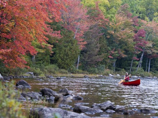 jerry-marcy-monkman-a-man-paddles-his-canoe-seboeis-lake-millinocket-maine-usa