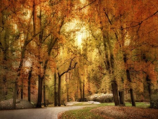 jessica-jenney-autumn-impressions