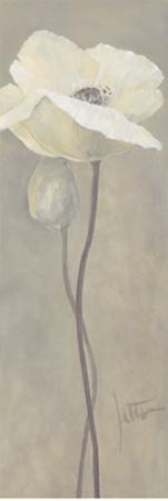 jettie-roseboom-poppy-in-white-iv