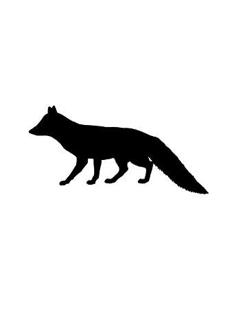 jetty-printables-black-fox
