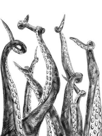 jetty-printables-octopus-tentacle-illustration