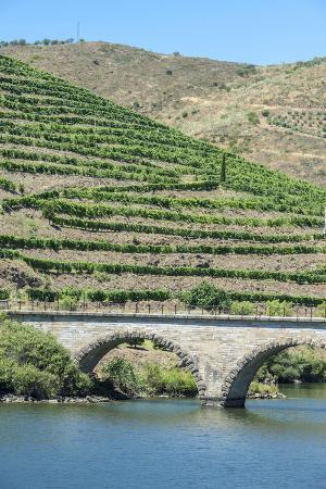 jim-engelbrecht-portugal-peredos-dos-bridge-and-vineyards-along-douro-river
