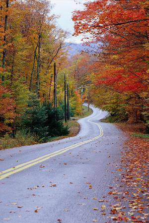 jim-schwabel-hollywood-rd-at-route-28-adirondack-mountains-ny
