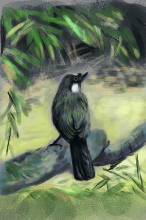 jim80-cg-painting-bird
