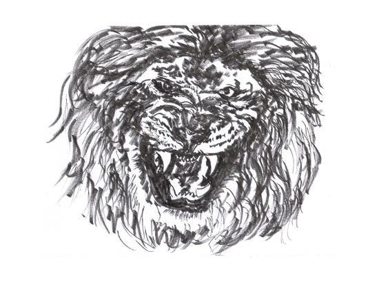 jim80-lion-head-sketch