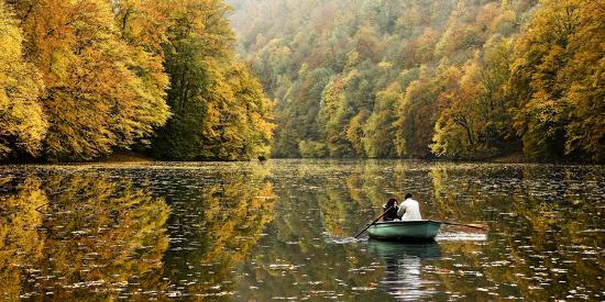 jimbi-autumn-idyll