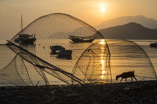 jimmy-chin-fish-nets-and-a-goat-on-a-beach