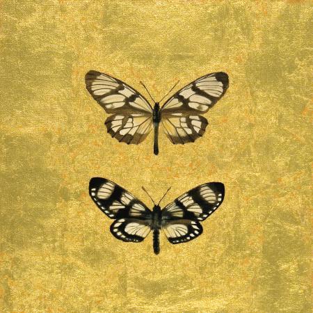 joanna-charlotte-pair-of-butterflies-on-gold