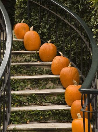 joanne-wells-fall-decorations-savannah-georgia