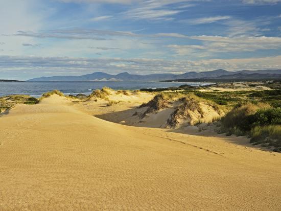 jochen-schlenker-sand-dunes-st-helens-conservation-area-st-helens-tasmania-australia-pacific