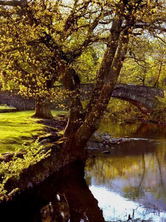 jody-miller-cotswold-bridge